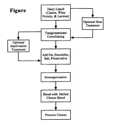 production yogurt flowchart ep1057412b1 into whey patent process of incorporation  [ 1856 x 2182 Pixel ]