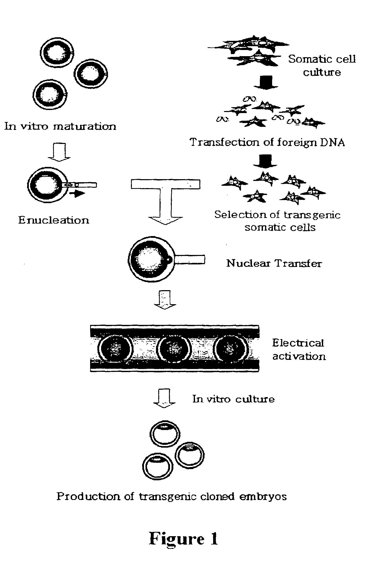animal cloning diagram viper winch solenoid wiring animals