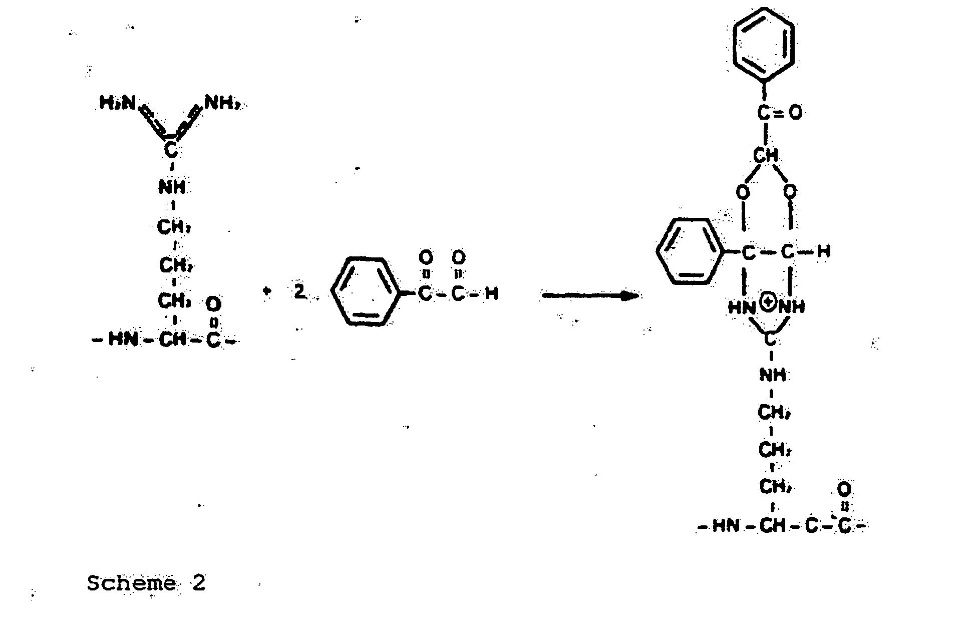 Phenylglyoxal