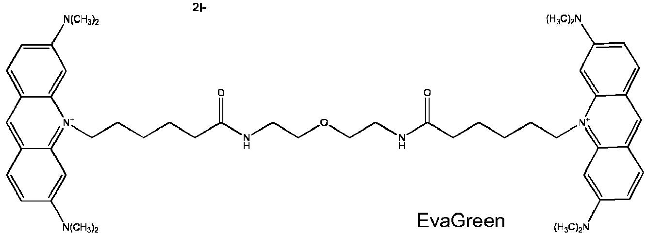 eva green pcr dye