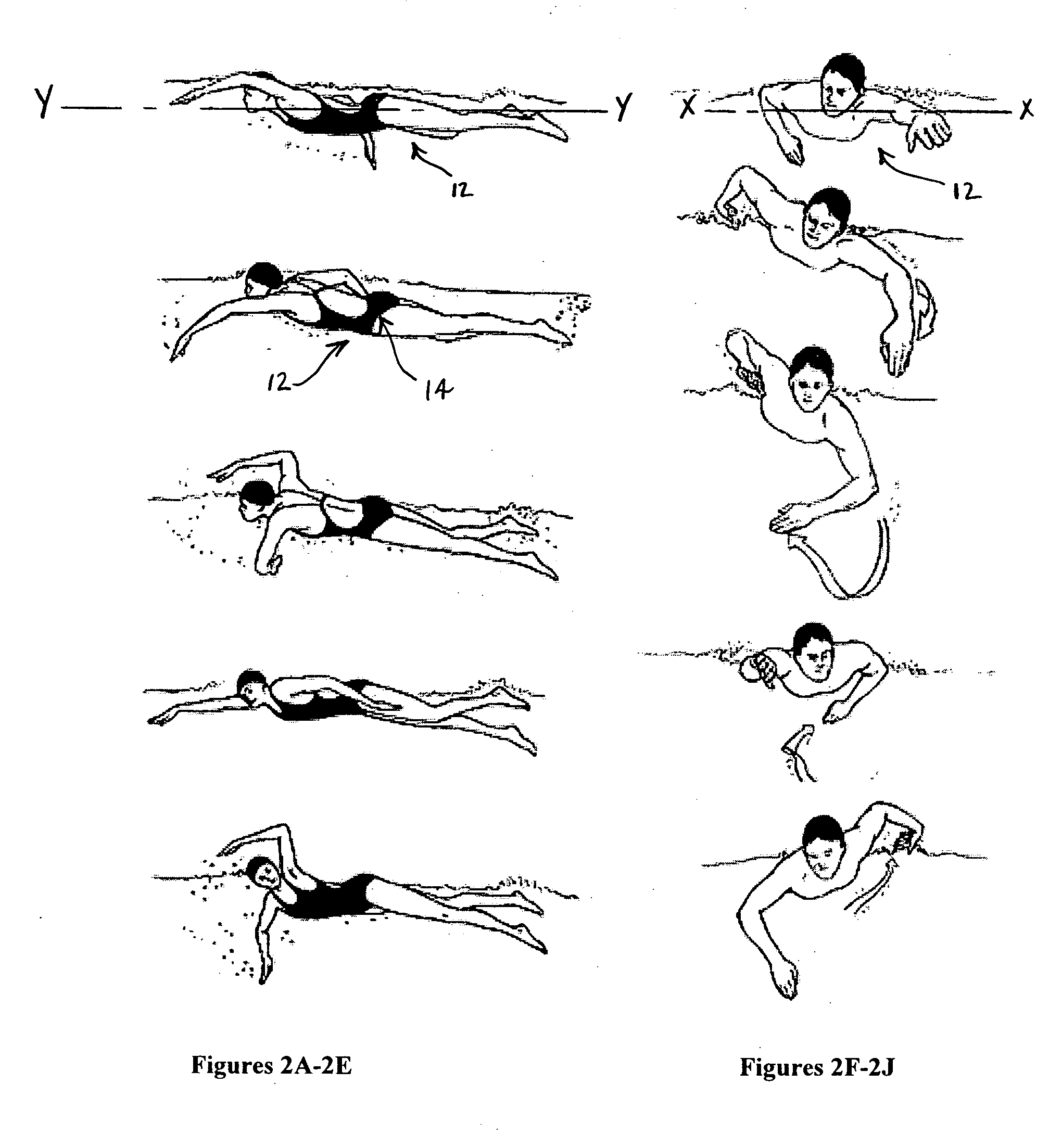 Butterfly Swimming Diagram
