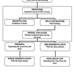 Stages Of Glycolysis And Fermentation Diagram Lutron Maestro Wiring Patent Us20060240146 Wine Making Process With Maceration