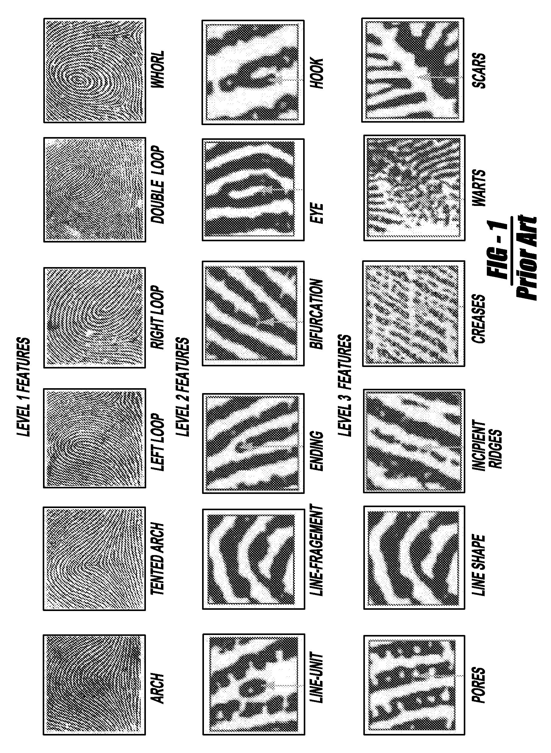 Fingerprint Characteristics Worksheet