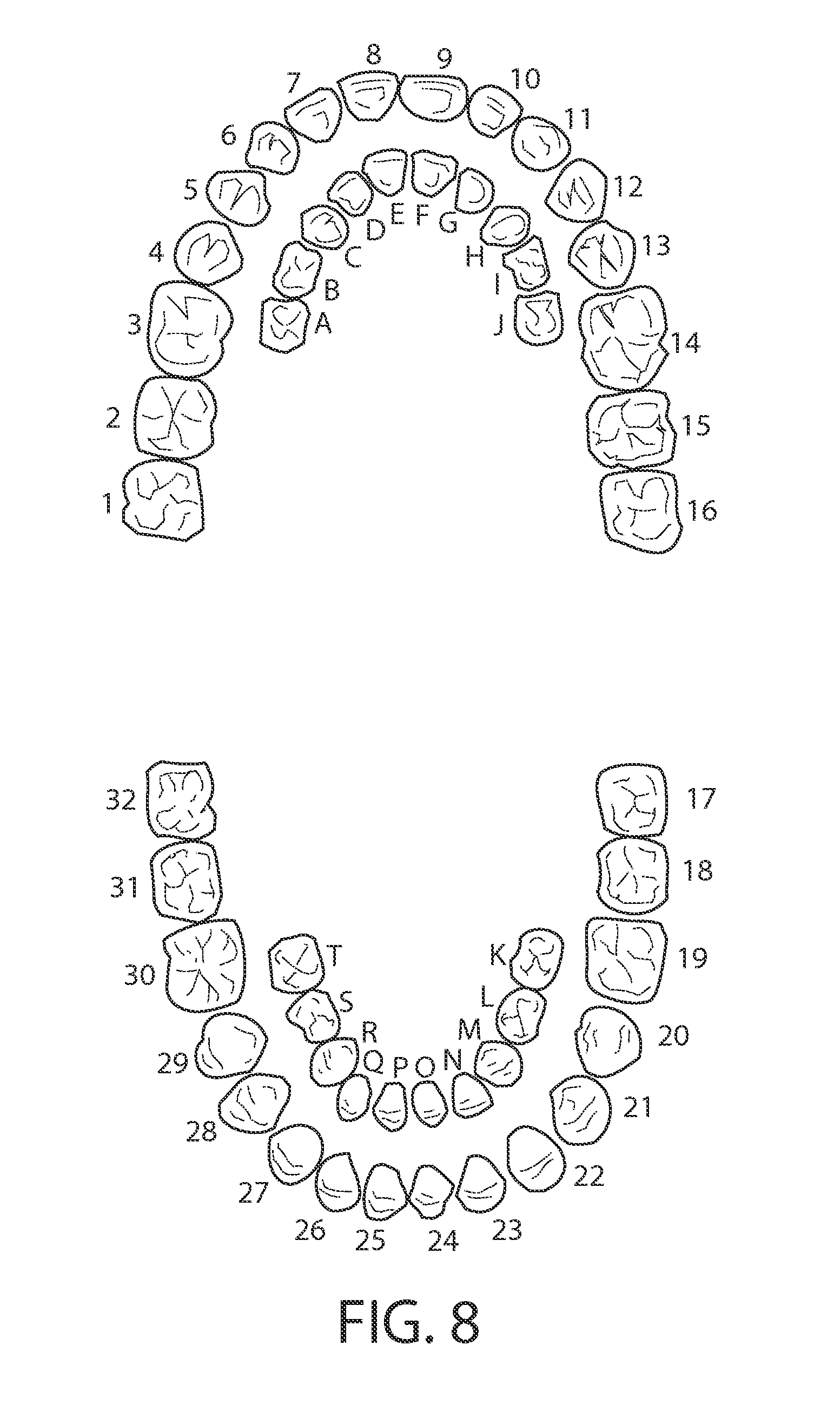 diagram of mouth with teeth numbers kenwood wiring harness colors dental tooth and fuse box