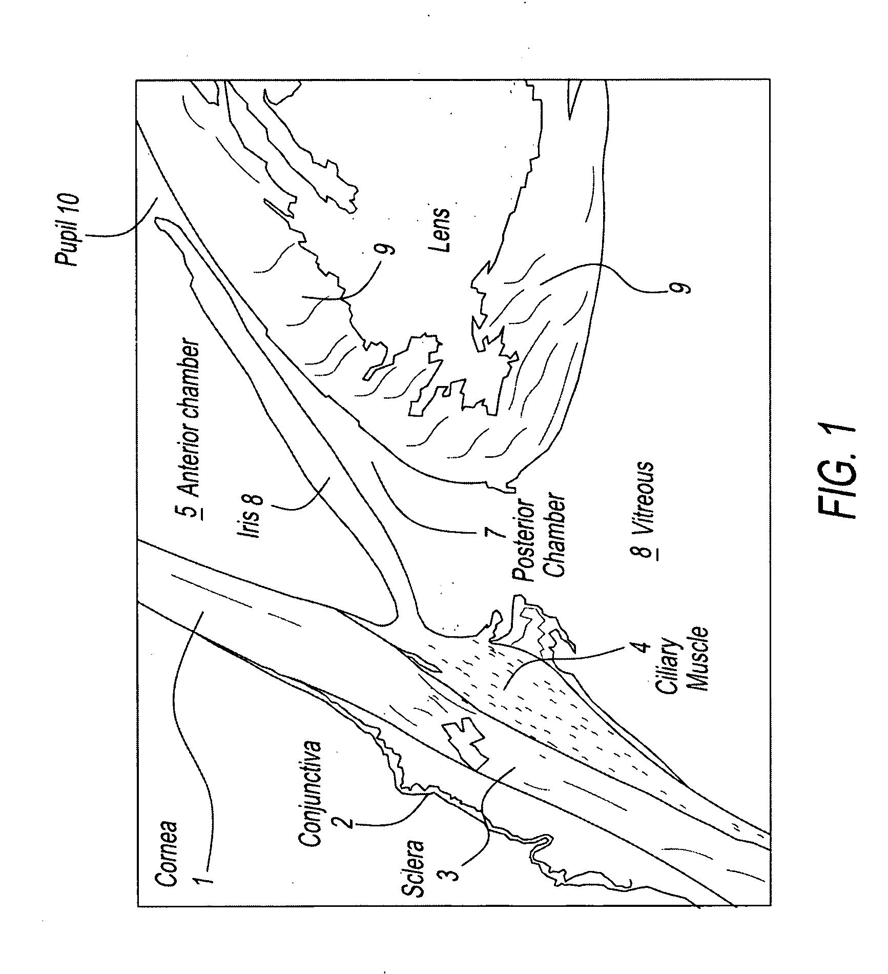 Connective Tissue Matrix Worksheet
