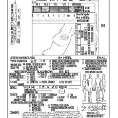 Wound Assessment Diagram Hopkins 7 Pin Trailer Wiring Home Codes Patent Us20120323126 Skin And Tool