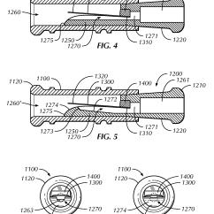 Duck Wing Diagram Jl Audio Wiring Diagrams Parts Of A Bird Skeleton Elsavadorla