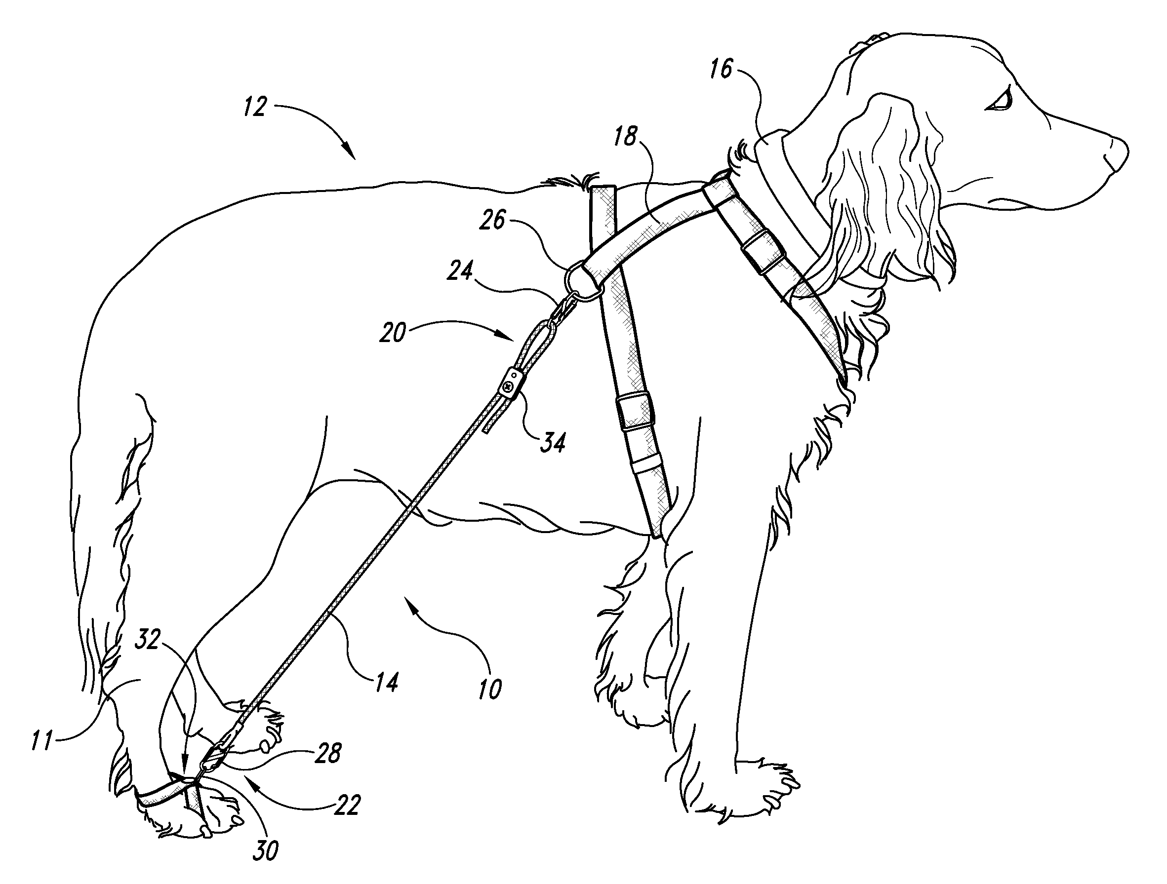 Belly Strap Dog Harness
