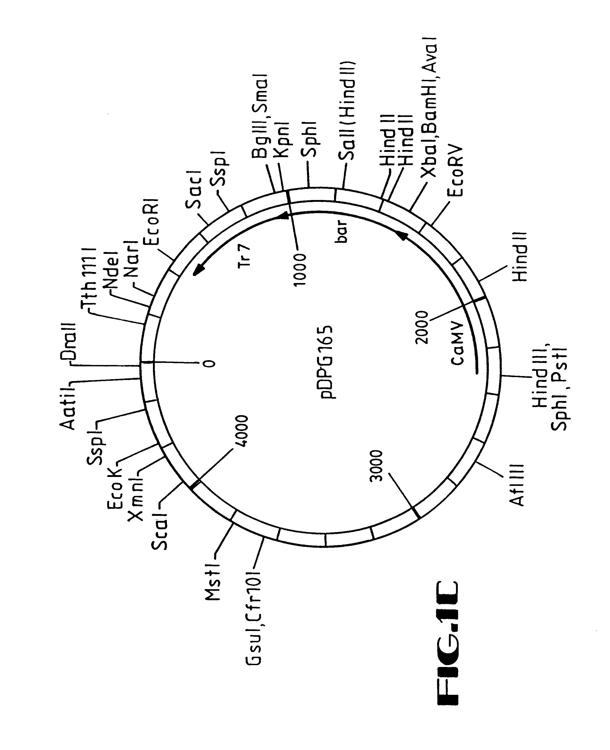 Pioneer Deh 2700 Wiring Diagram, Pioneer, Get Free Image