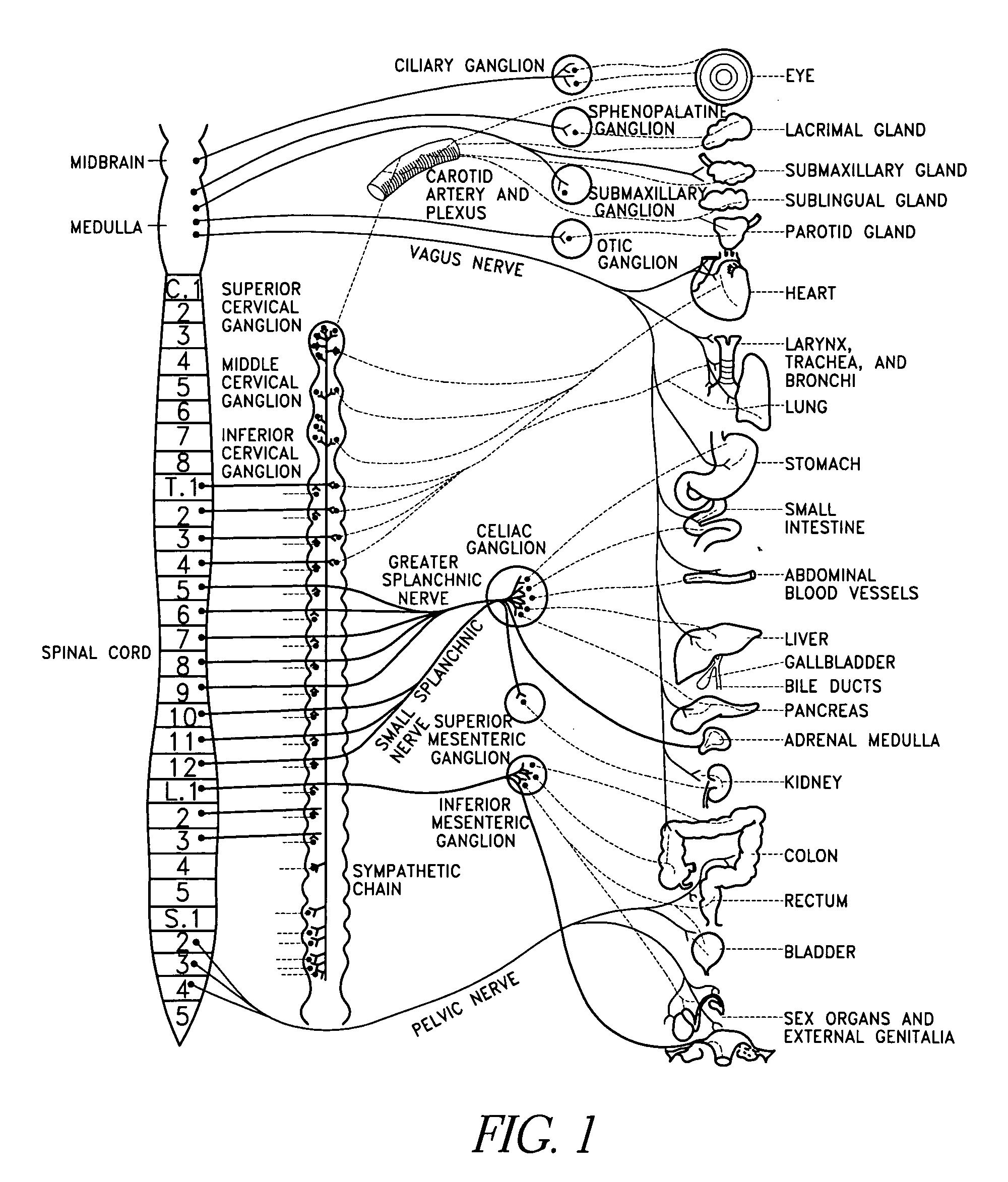 Patent US7239912 - Electric modulation of sympathetic nervous system - Google Patents