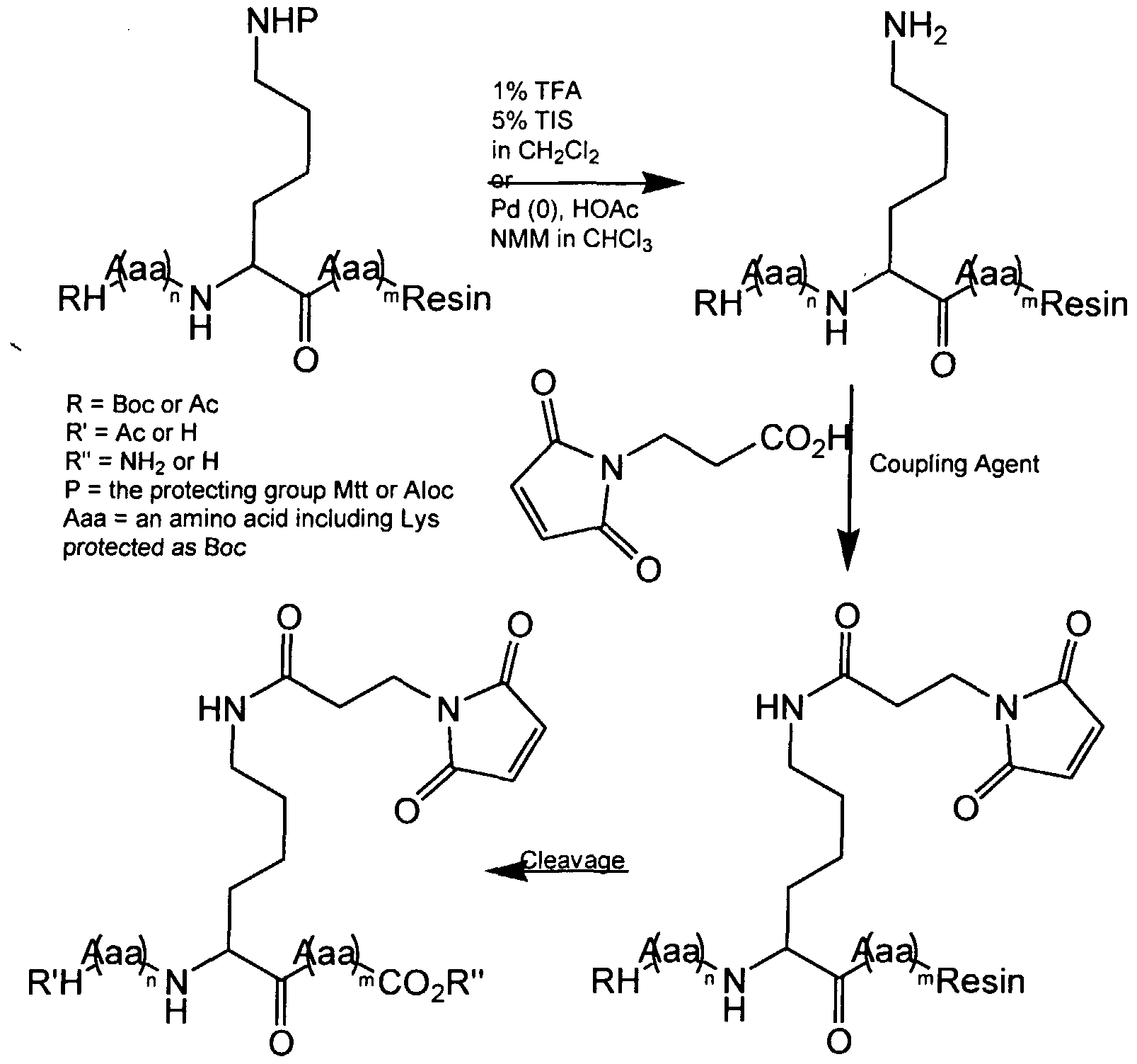 peptide structure diagram simple wiring for light sensor schematic of a get free image about