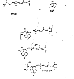 the resulting derivatized dna molecule containing a highly reactive ester group is the precursor to a wide variety of labeled dn a molecules  [ 1912 x 2151 Pixel ]
