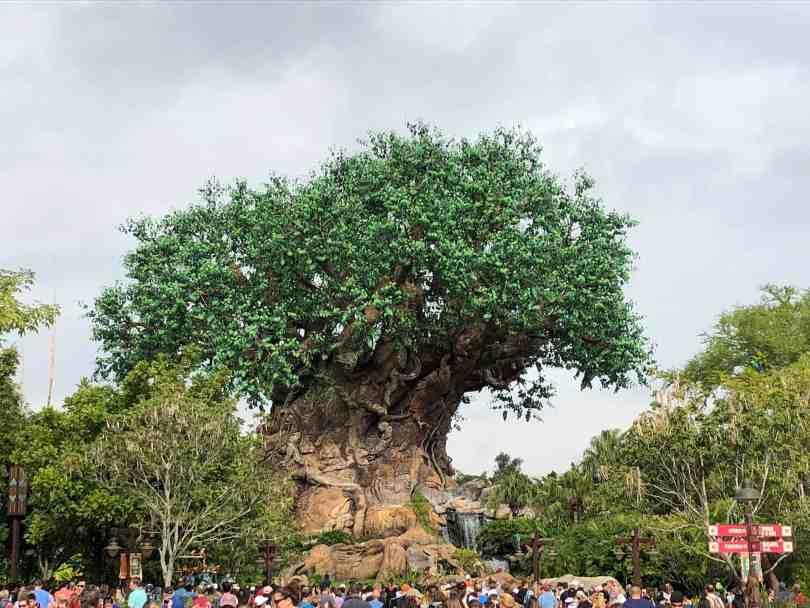 Foto da Árvore da Vida, do Magic Kindgom, de Orlando.