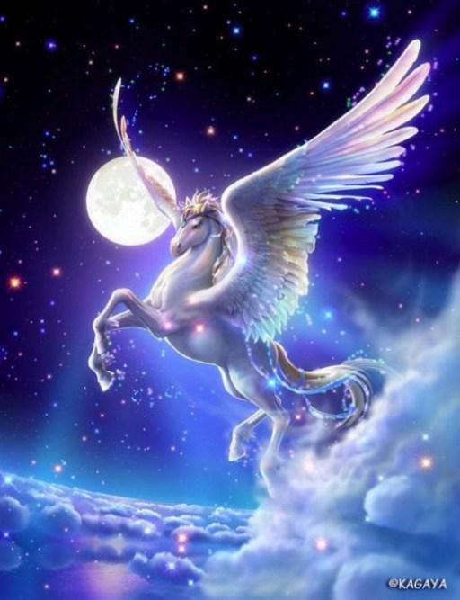 cheval lumiere