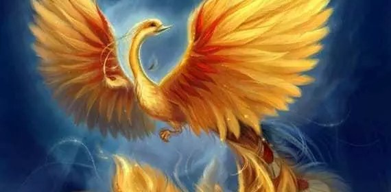 reiki phoenix,patetnina,initiation