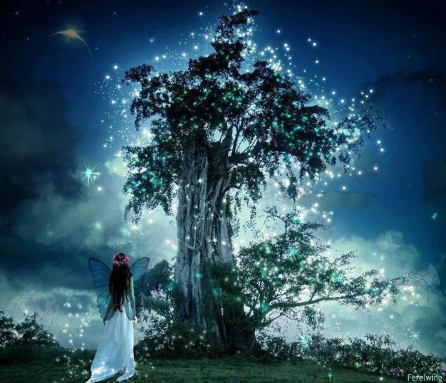 arbre lumiere et fee