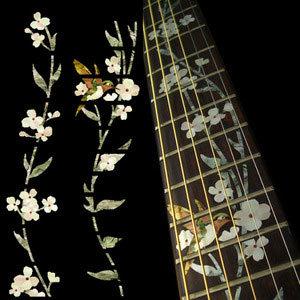 La leçon du professeur de guitare