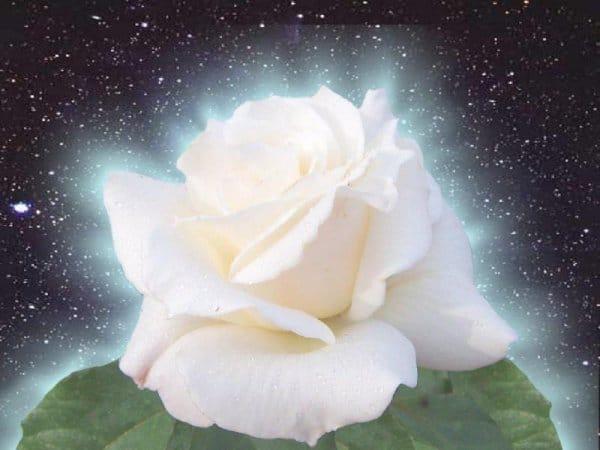 Le rayon blanc : aide pour purifier et désencombrer.