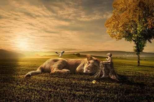 Vous devez nourrir votre âme car il s'agit de votre véritable existence