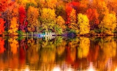 Les énergies de ce mois de Novembre servent de propulsion vers de nouvelles perspectives