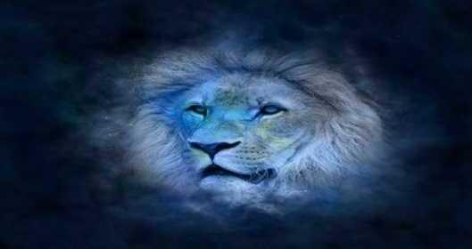 Les énergies astrologiques 2019 pour le signe des LION