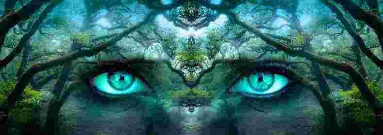 Ouvrir notre cœur aux autres dimensions de la Vie