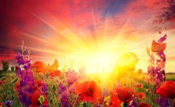Il est bon d'accueillir chaque journée consciemment