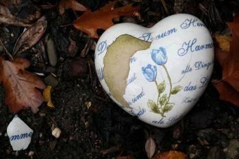 Les Pléiadiens : Cœur et corps sont un duo parfait