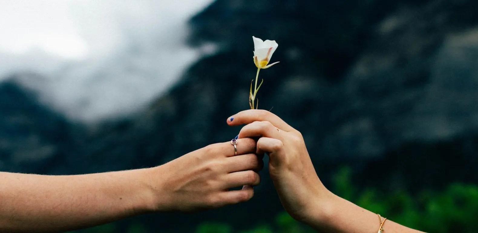 utiliser la gentillesse pour soigner les personnes difficiles