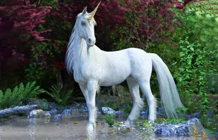 licorne animal totem
