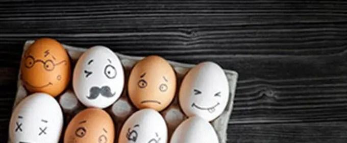 gestion des emotions Q.E