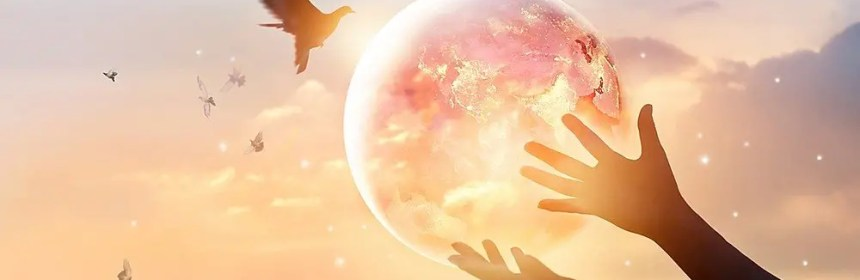 plan pour la terre