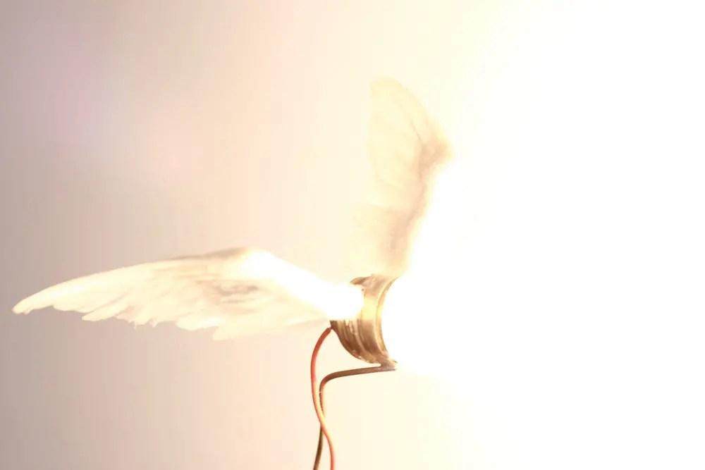Symbolisme des ailes
