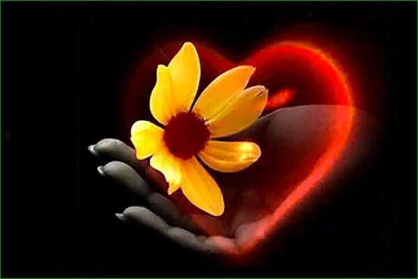 compassion et coeur