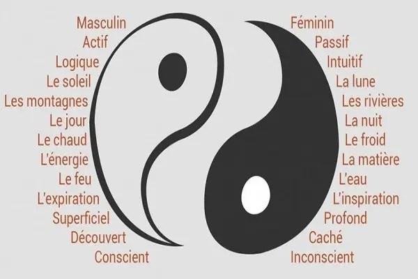symbolisme-du-yin-yang