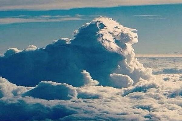 lion en nuage