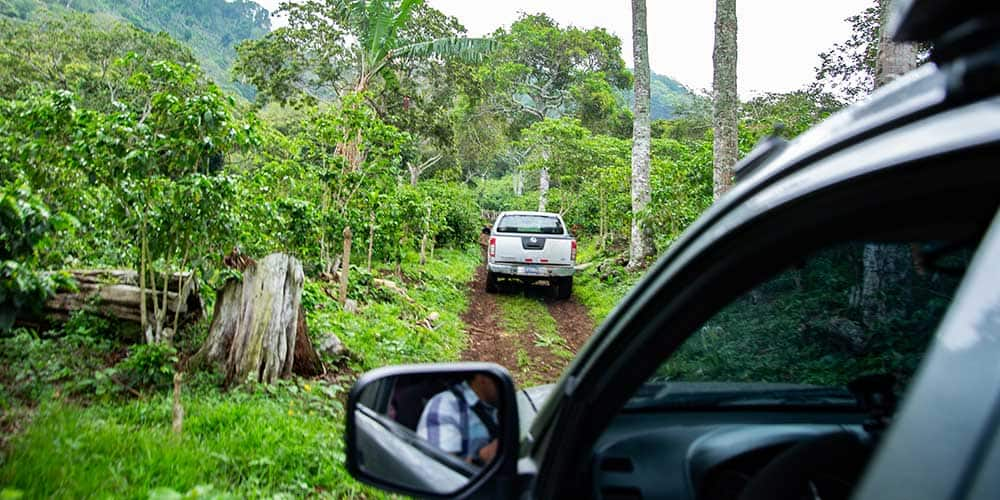 Climbing the dirt road up to the top of Finca Monte Verde in El Salvador.