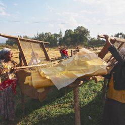 Kolla Bolcha, Ethiopia Coffee