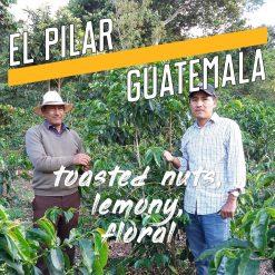 el pilar guatemala coffee