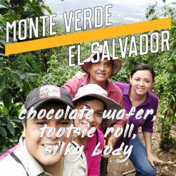 Monte-Verde-El-Salvador