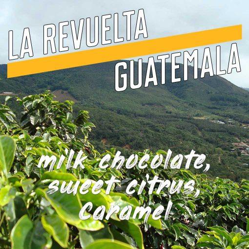la-revuelta-guatemala-coffee