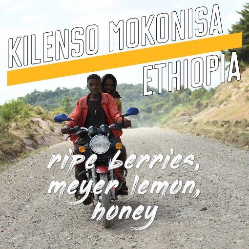 kilenso mokonisa ethiopia coffee