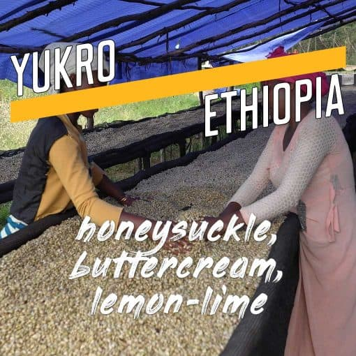 Yukro, Ethiopia Coffee
