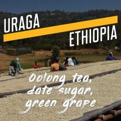 uraga, ethiopia coffee