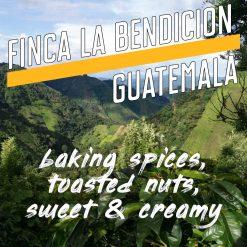 Guatemala Finca La Bendicion Image