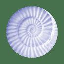 fioletowy-muszla