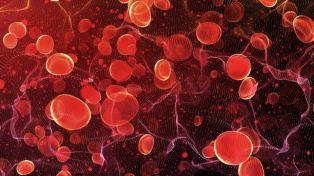 Hematology and transfusion medicine blogs