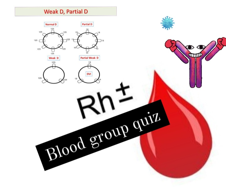 Test your knowledge rh blood group system quiz
