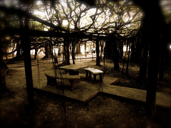 banyan-table-object