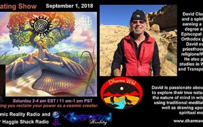 Interview on the Cosmic Creating Show